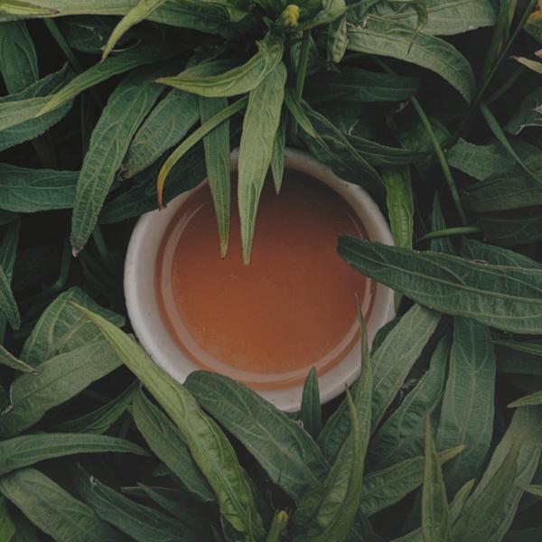 Cup of Finlays tea