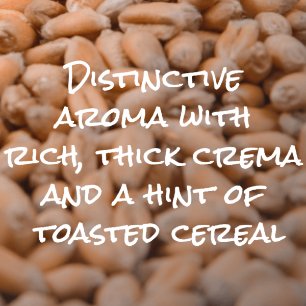 Distinctive aroma with rich, thick crema and hint of toasted cereal
